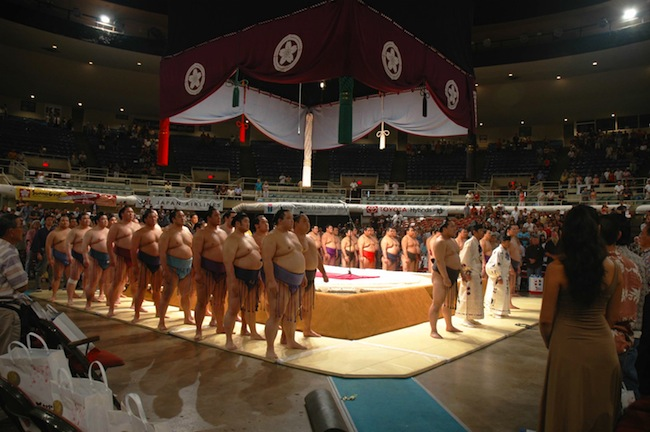 HIC_sumo