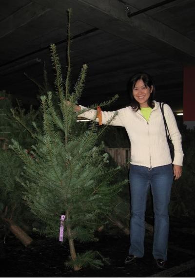 Christmas Tree Paula